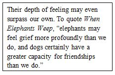elephants weep